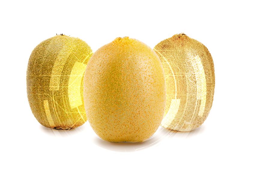 three kinds of kiwi